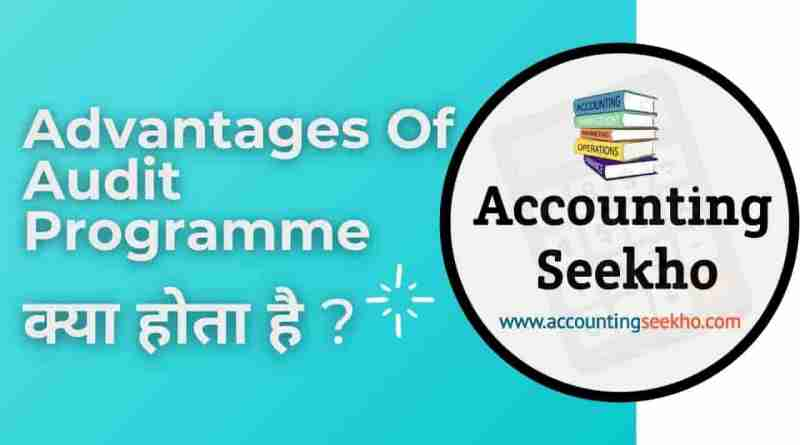 Advantages Of Audit Programme in Hindi