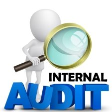 Image result for INTERNAL AUDITOR