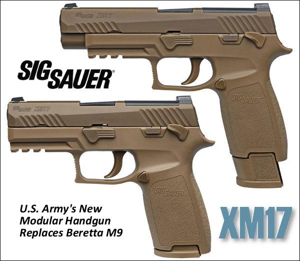 Image result for SIG XM17
