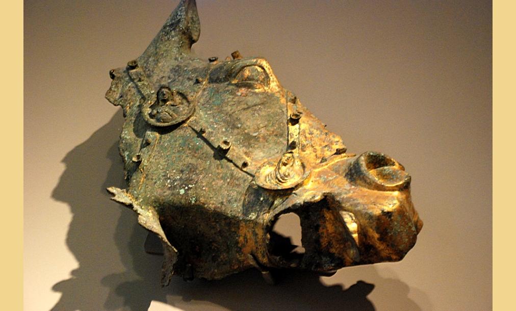 Dettaglio della testa equestre in bronzo dorato da Suasa - Foto di Hans Hollermann