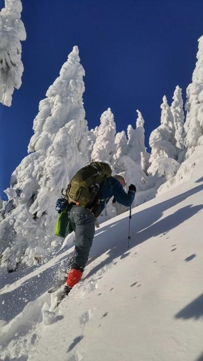 Laura King - Breaking trail