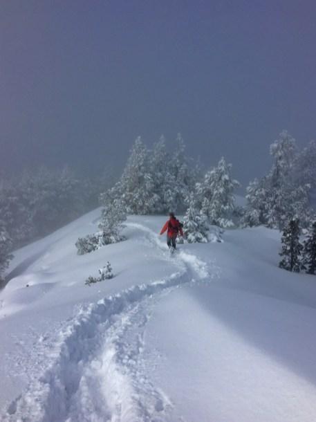 Ulrike Schmidt: Mount Benson winter-wonderland