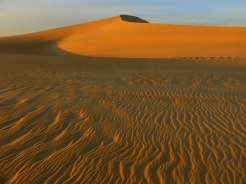 Liz Williams - Mountain of the Great Sand Sea, Egypt
