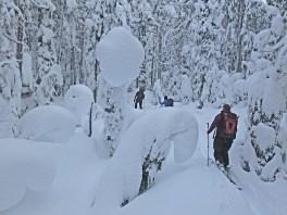 Sandy Briggs: Mt Washington