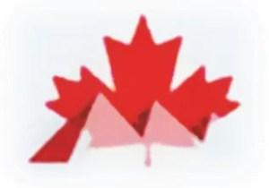 فريق الدعم الكندي