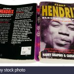 electric-gypsy-a-biography-of-jimi-hendrix-by-harry-shapiro-and-caesar-E047H2