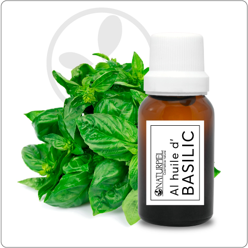 Aceite esencial de albahaca - Orgánico