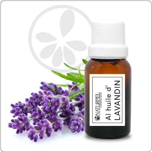 Aceite de Lavandin – orgánico 100% puro