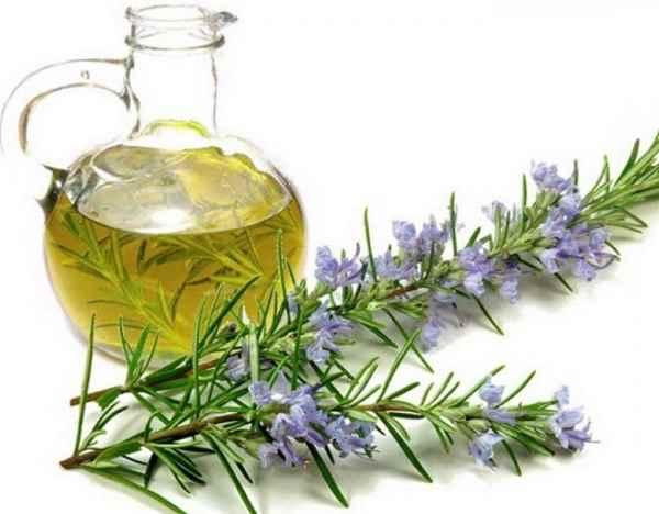 propiedades del aceite de romero