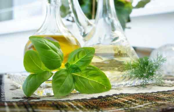 como se hace aceite de albahaca