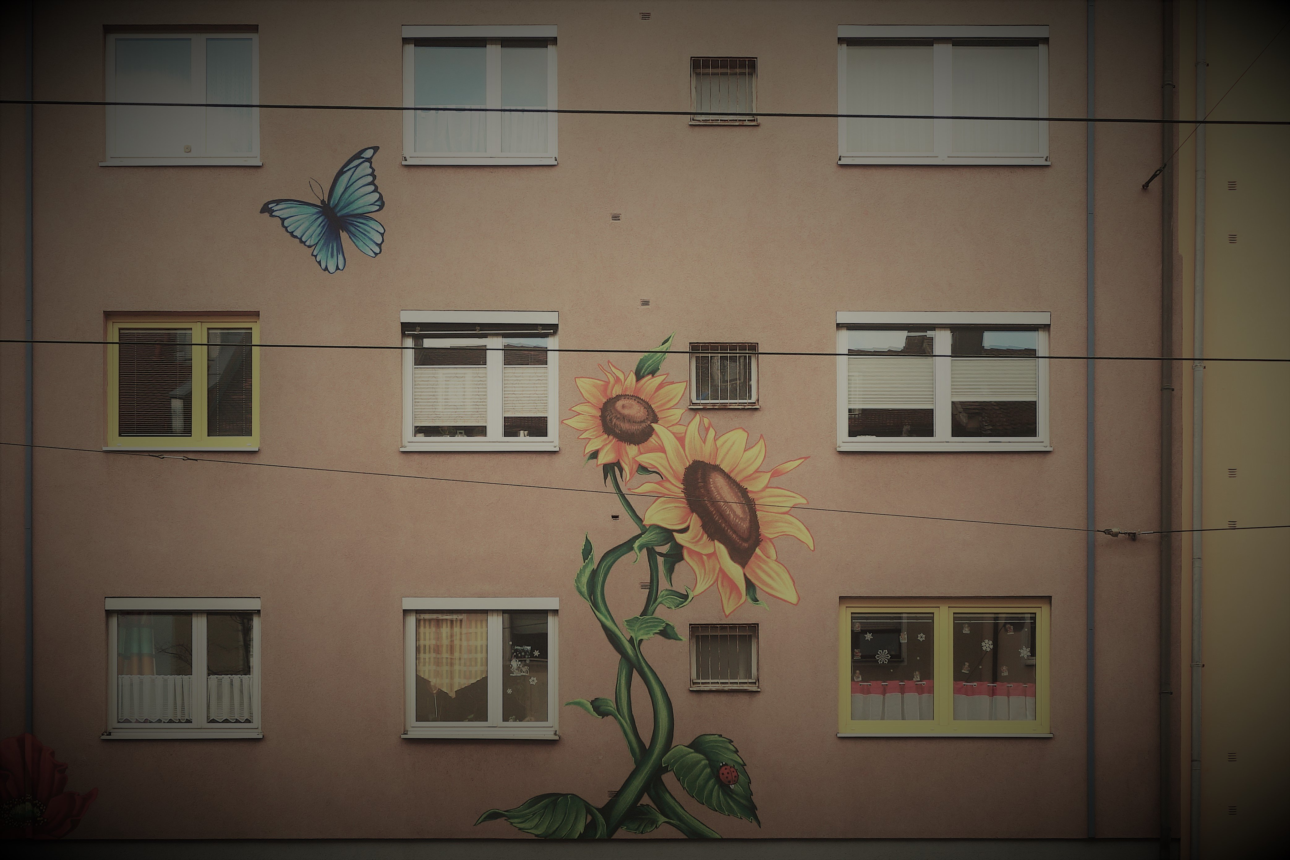 butterfly building