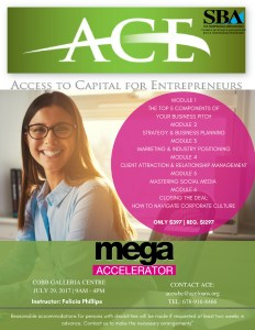 OFFICIAL ACE MEGA ACCELERATOR
