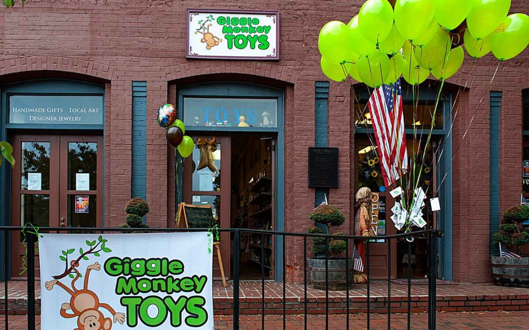 Client Spotlight: Giggle Monkey Toys