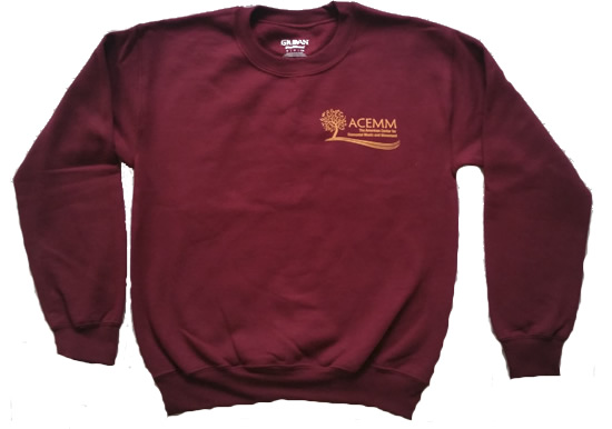 crew neck sweat shirt - red