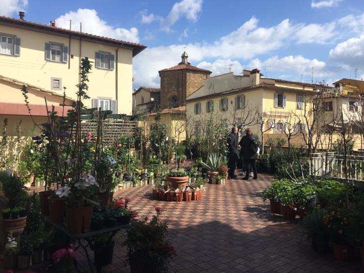 Sant'Ambrogio a Firenze C.bio