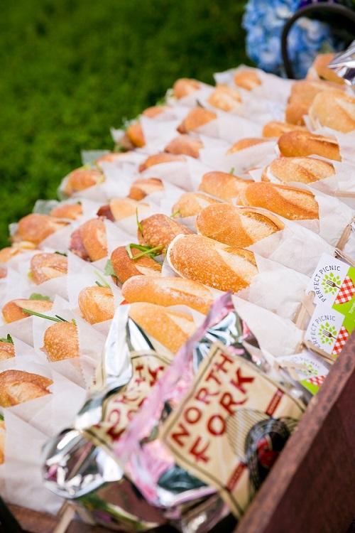picnic-wedding-central-park-3