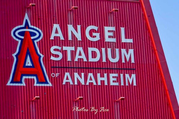 Yankees vs Angels -125