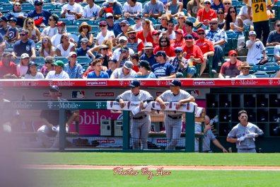 Yankees vs Angels -30