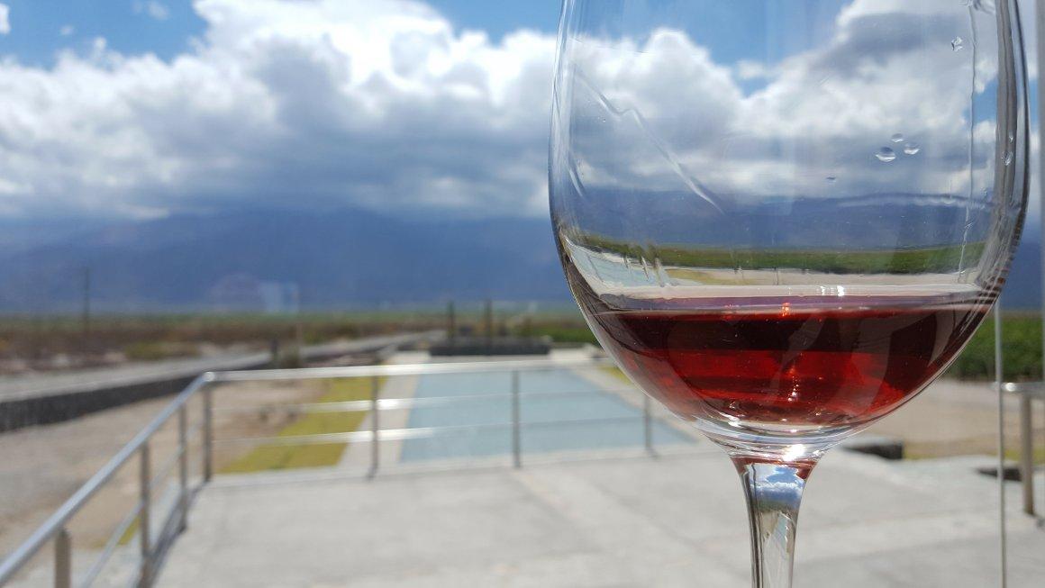 ¿Por qué escribir un blog de vinos? 22