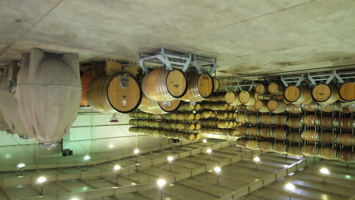 Catena Institute of Wine, la NASA de los vinos 2