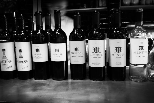 Mendel Wines celebra la llegada de su Cabernet Franc