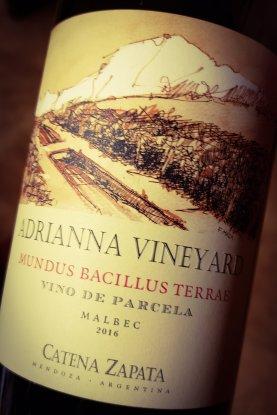 Adrianna Vineyard Vinos de Parcela, mensajeros del terruño 10