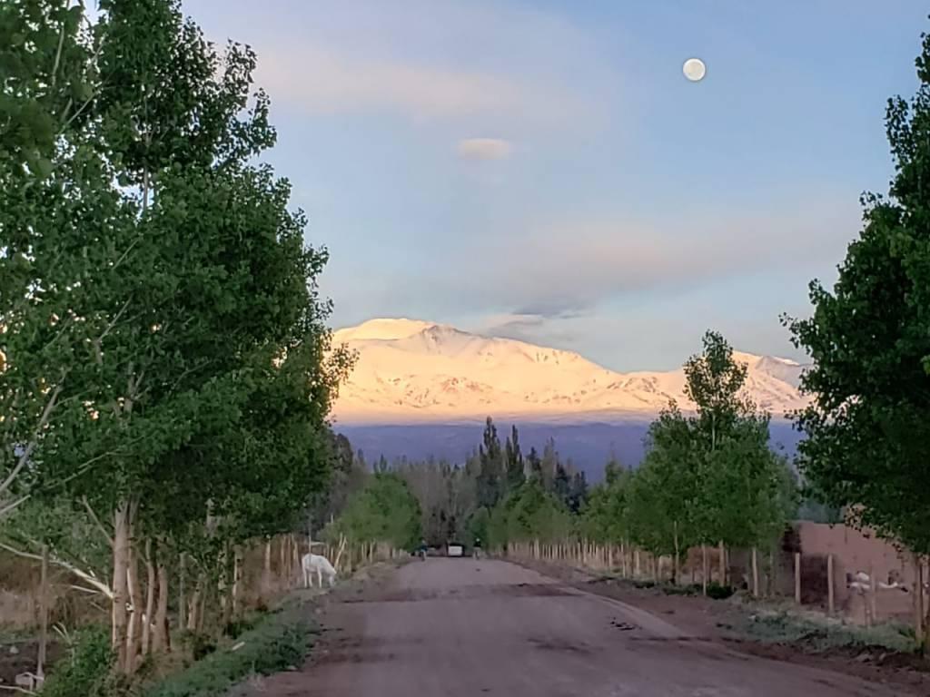 Alfil - Barreal - Valle de Calingasta - San Juan
