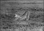 Tanzânia 1220010025©JMA