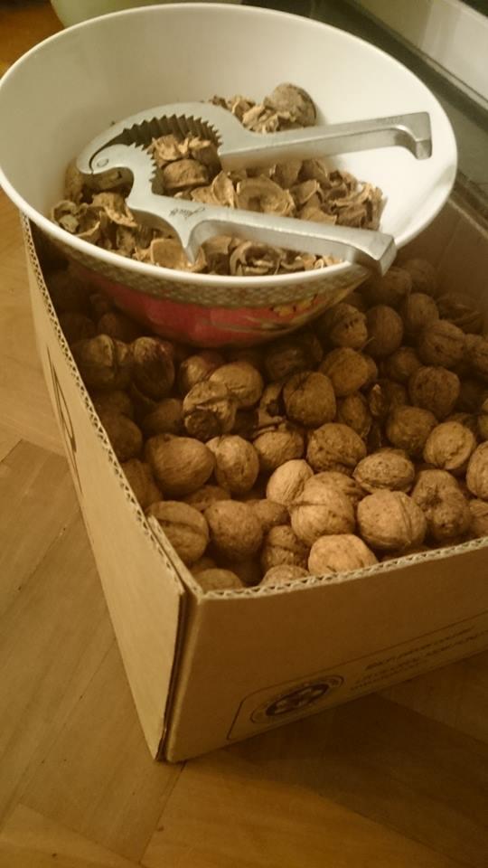 Het belangrijkste ingrediënt van de notenazijn: Walnoten