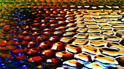 cropped-mind-ammonite-rainbow.jpg