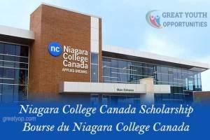 Africa Continent Scholarship at Niagara College Canada