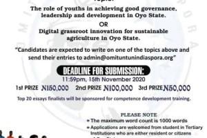 2020 Seyi Makinde Annual Essay Competition For Undergraduates