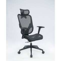 Executive Mesh Office Chair Hanging From Tree Chairs Y Back Frame Black
