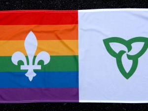 Photo de drapeau franco fierté