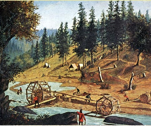 The_secret_history_of_the_gold_rush