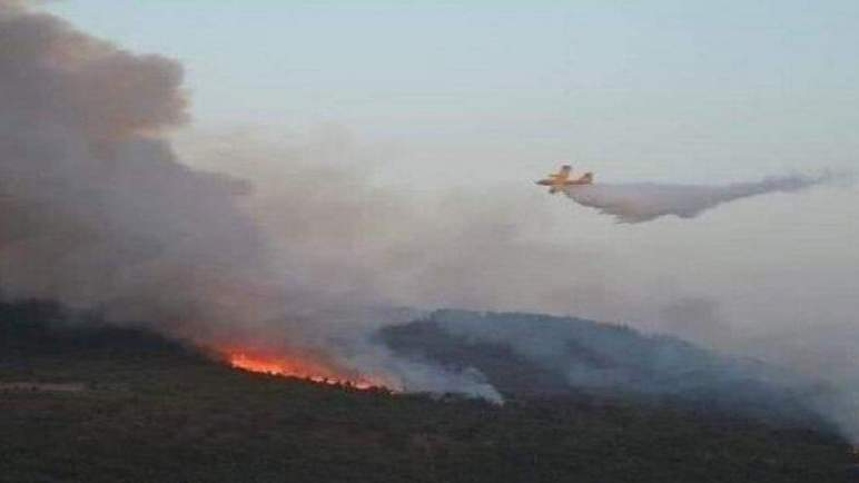 """احتواء """"شبه تام"""" لحريق غابة """"سوكنا"""" بشفشاون وتضرر 1100 هكتار من الغطاء الغابوي"""