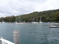 Morning Bay