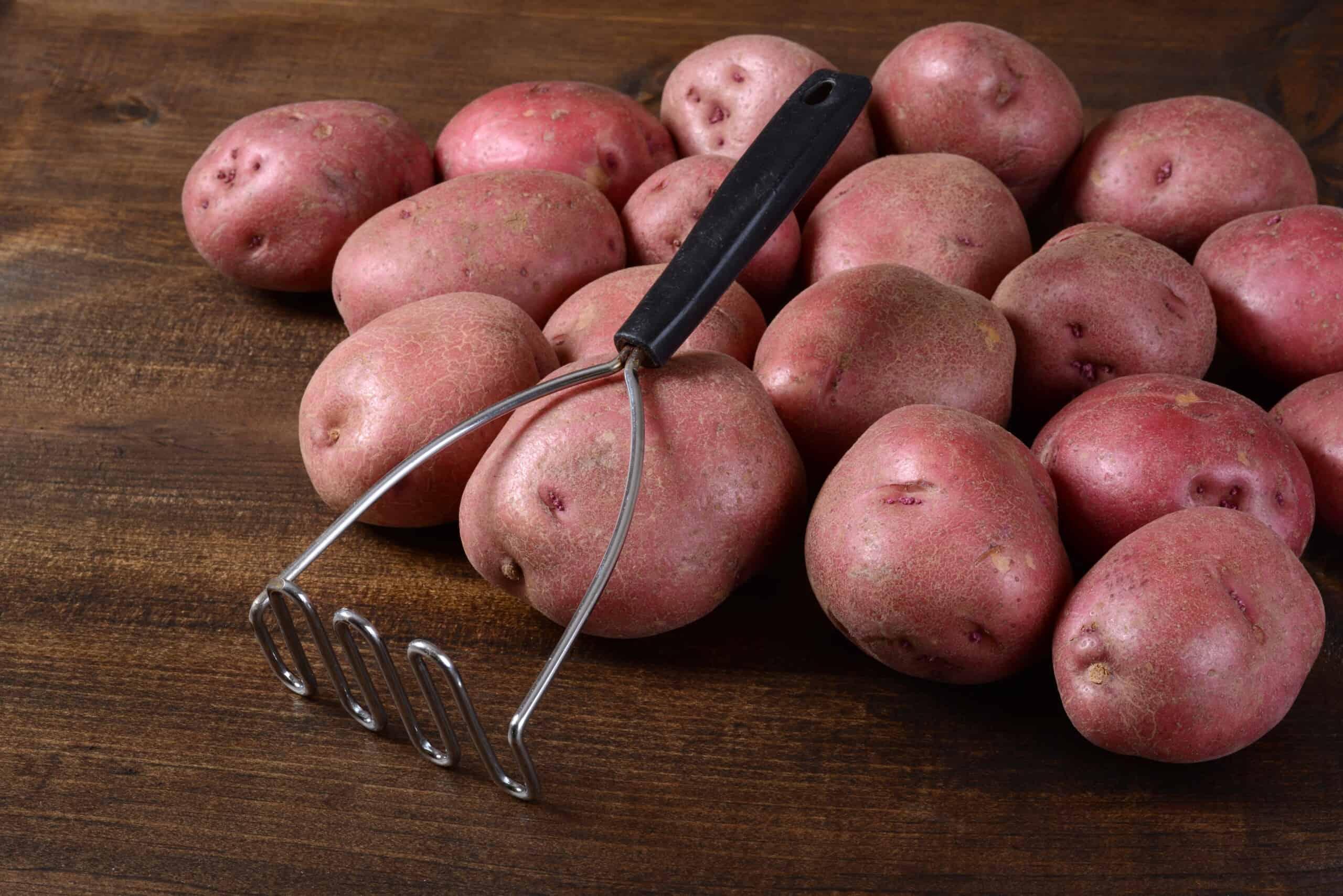Cuisine en Acier Presse à pommes de terre manche en bois alimentaire Prep