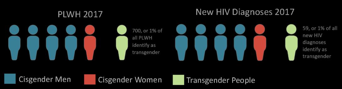 new gender visualgreen trans2_