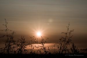 Sunrise,Harsum