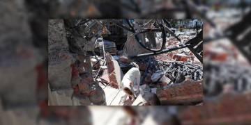 Equipo de canes de las Fuerzas Armadas realizan búsqueda y rescate de personas bajo escombros. (Tomada de @FFAAECUADOR)