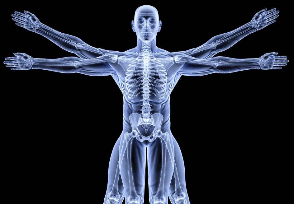 10857065 - vitruvian man under x-rays. isolated on black.