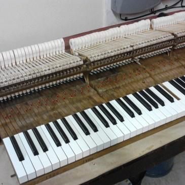 Steinway Piano Action Rebuild