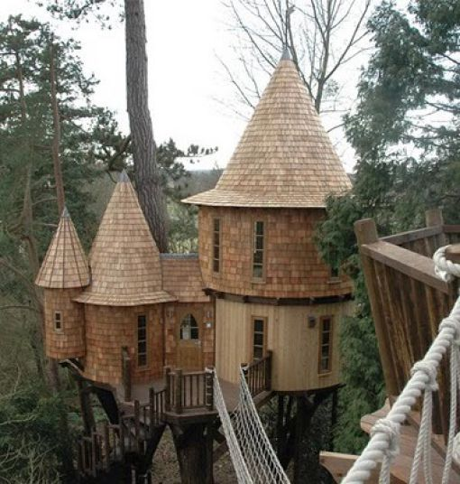 Horace Burgess (in Tennessee) built a tree house, with a whopping 1,000  square