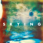The-horrors-Skying