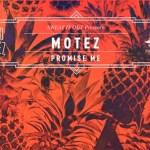 Motez - Promise Me - acid stag