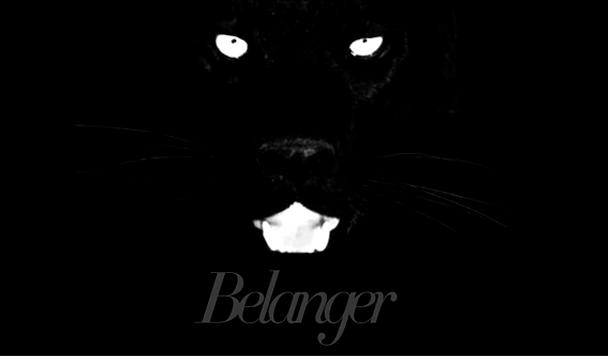 Belanger - Calico - acid stag