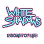 White Shadows, PNAU, The Vines - Secret of Life - acid stag