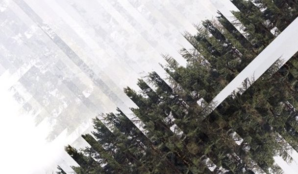 CKtrl – Forest EP [Stream]