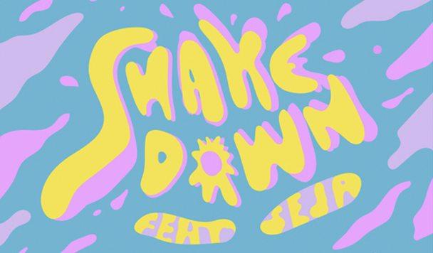 Equal - Shakedown (ft. Seja) - acid stag